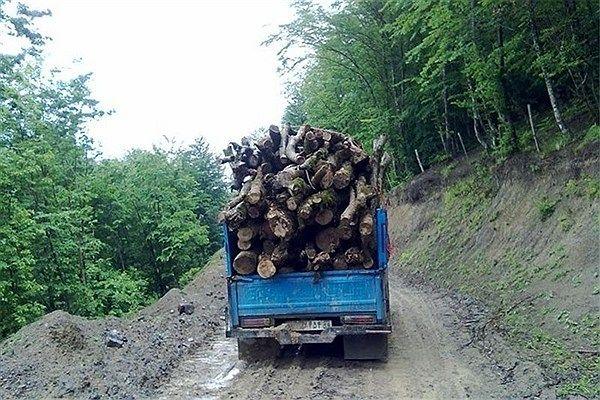 چوب+قاچاق