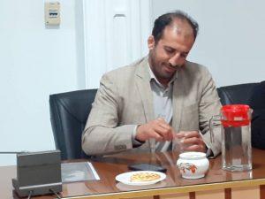 سیامک احمد زاده