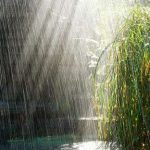 باران در گیلان