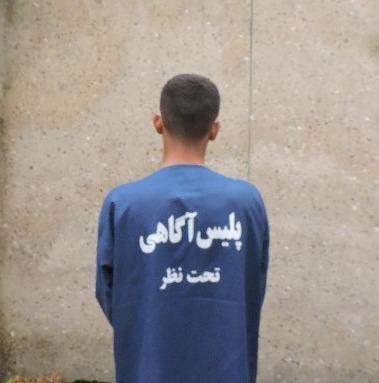 سارق-دستگیر