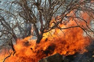 افتتاح ایستگاه ۱۴ آتش نشانی و خدمات ایمنی و رونمایی از شش دستگاه خودروی مهجز آتش نشانی