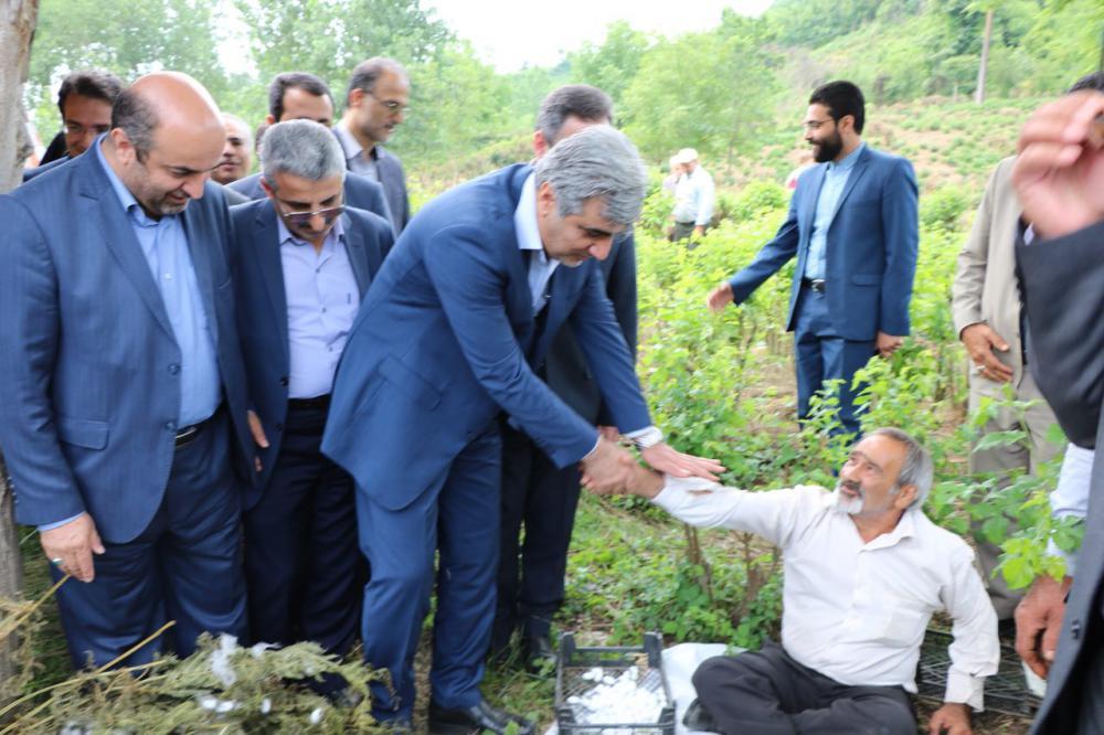 استاندار گیلان به لاهیجان سفر کرد+تصاویر