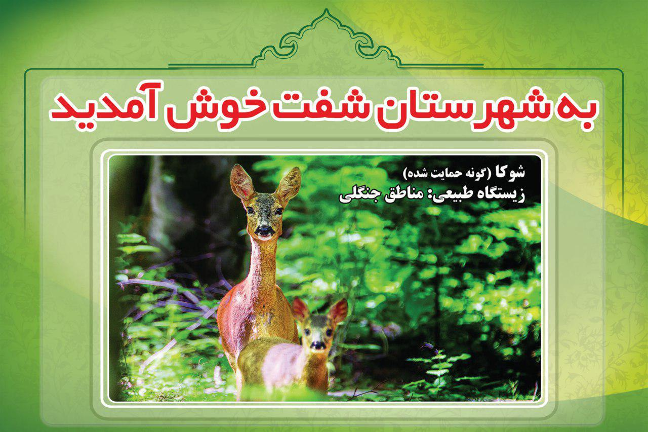 پیام خوش آمد گویی گونه های حمایت شده زیستگاههای طبیعی و مناطق جنگلی به مسافران و گردشگران