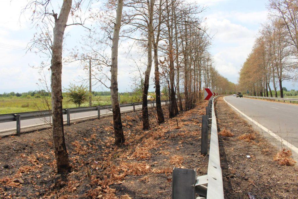 افتتاح ۴۳ پروژه راهداری و حمل و نقل جادهای در دهه فجر
