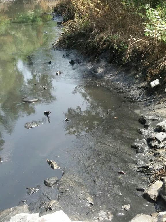 عملیات لایروبی رودخانه ها توسط شهرداری رشت همچنان ادامه دارد/شهروندان از ریختن زباله و وسایل مستعمل خود به رودخانه ها جداً خودداری کنند/آسفالت محله امیر کبیر حمیدیان رشت انجام شد