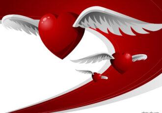 پرواز قلب کامیاب به تهران